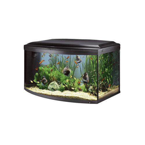 Качествен оборудван аквариум