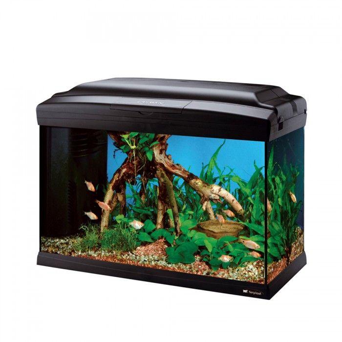 Хубав аквариум до 600лв