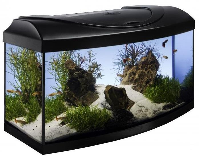 Хубав аквариум до 150лв