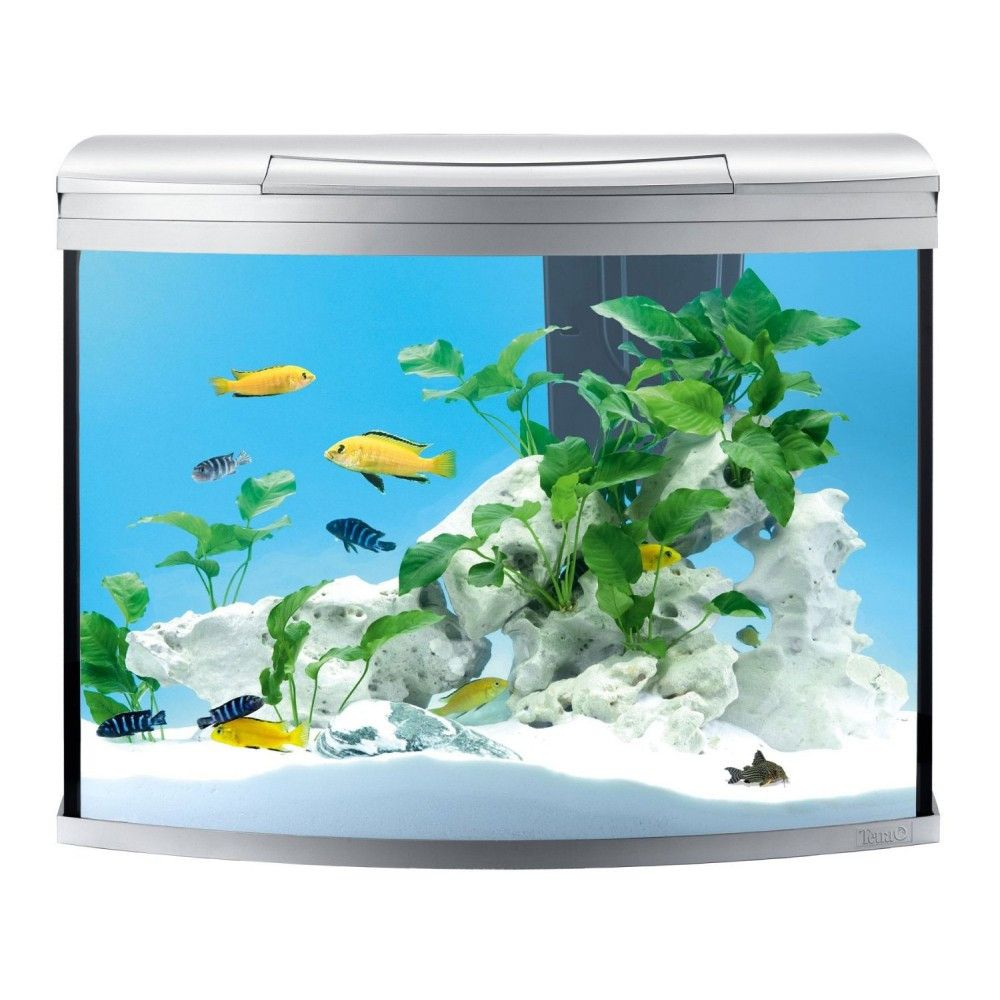 Хубав евтин аквариум
