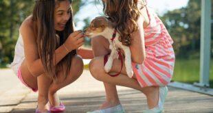 Отглеждане на куче с дете